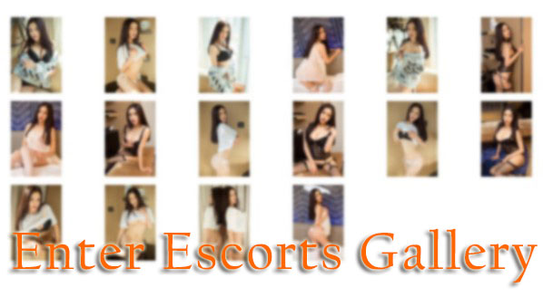 Click to Enter New York Asian Escort Gallery